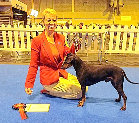 Manchester Terrier And Owner